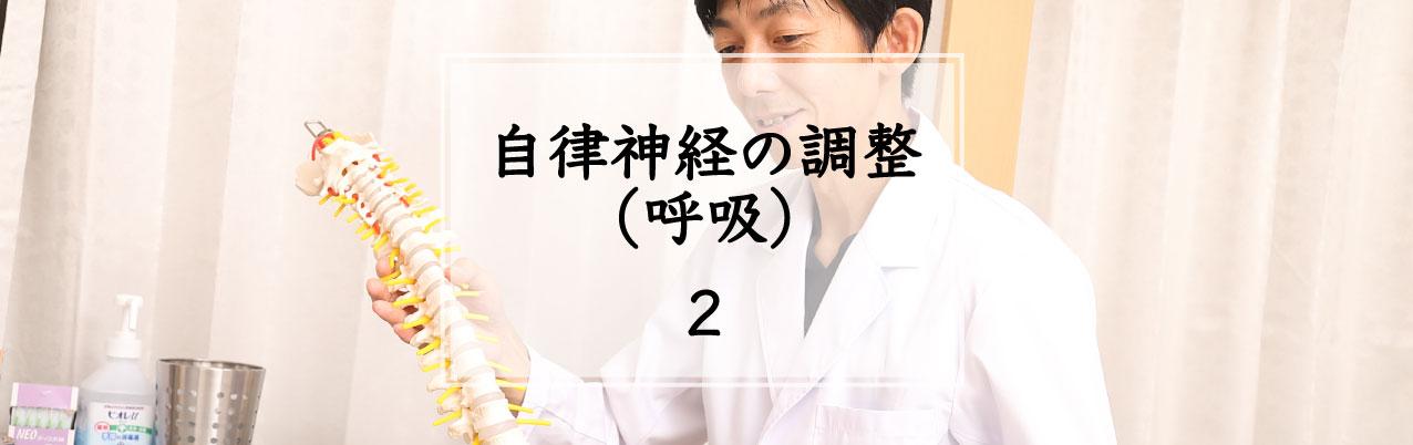 美浜鍼整道当院の施術の特長2